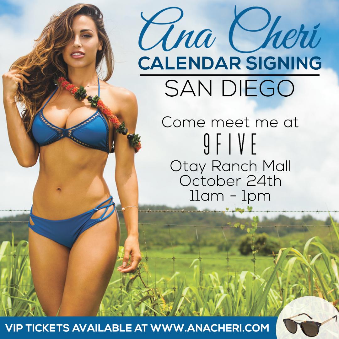 SD calendar signing
